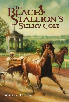 Black Stallion's Sulky Colt