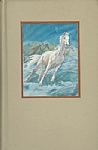 The Silver Brumby & Silver Brumby's Daughter 2 Book Bind-up - HB