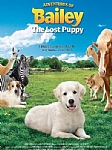 Adventures of Bailey:  The Lost Puppy - DVD