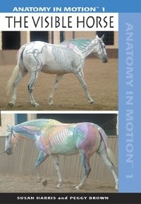 Anatomy in Motion 1: The Visible Horse - DVD