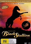 Adventures of the Black Stallion:  Season 1 - DVD