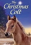 Christmas Colt - DVD