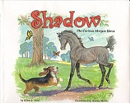 Shadow, the Curious Morgan Horse - HB (large print)