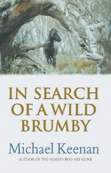 In Search of a Wild Brumby