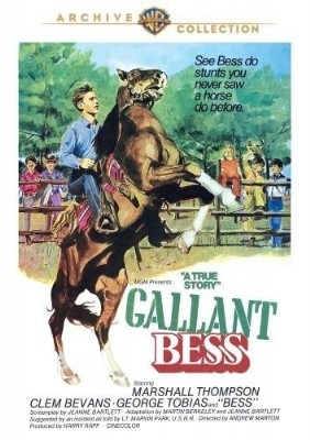 Gallant Bess (Navy) -(NTSC) DVD