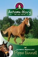 Autumn Glory the New Horse