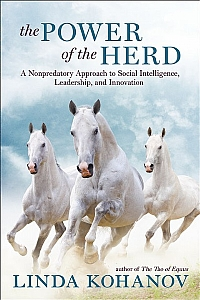 The Power of the Herd - HB