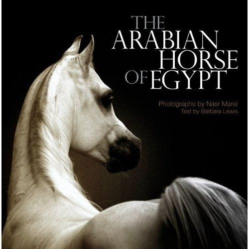 Arabian Horse of Egypt, The