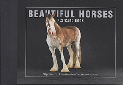 Beautiful Horses Postcard Book: 30 Postcards of Champion Breeds to Keep or to Send