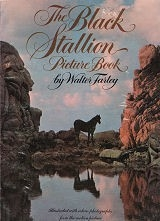 The Black Stallion Picture Book