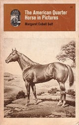American Quarter Horse in Pictures, The